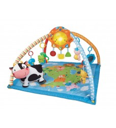 VTech Little Friendlies 2-in-1 Baby Gym