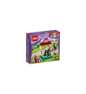 Brand: LEGO | Category: Bricks & Building Sets | Theme: Friends | Set 41123